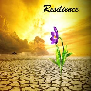 Resiliência_EN